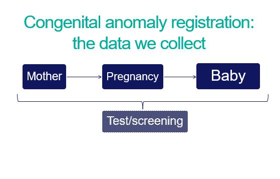 congenital anomaly data